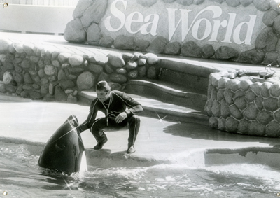 Joel SIlverman Petting A Killer Whale