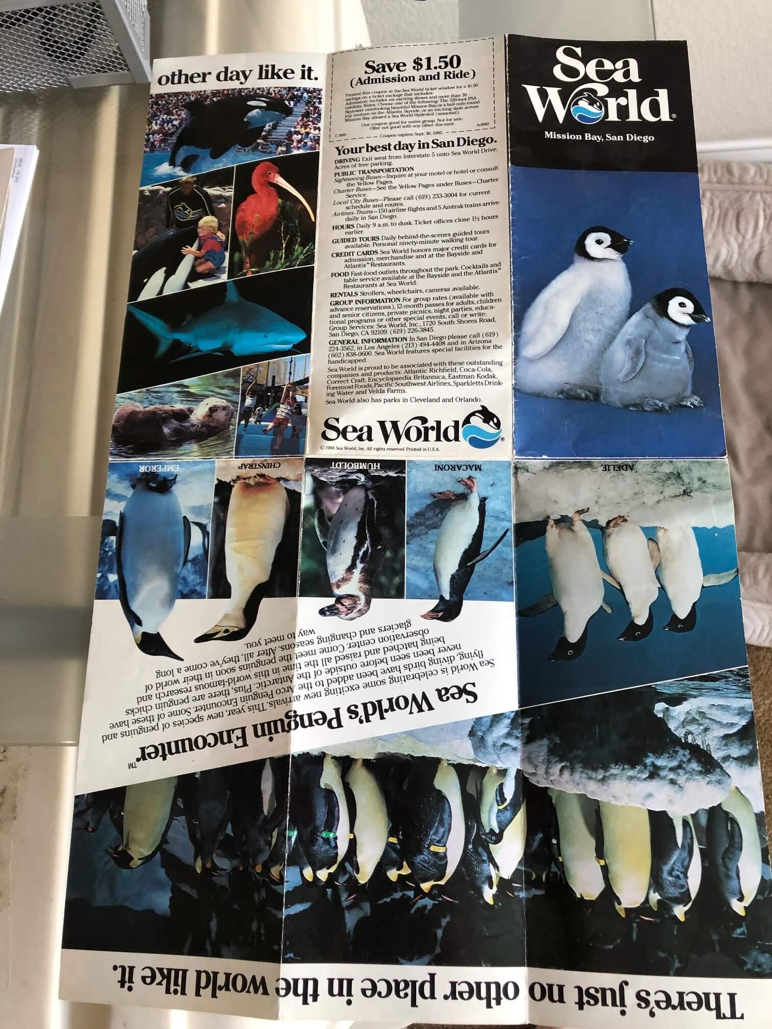 Joel Silverman Training Killer Whales