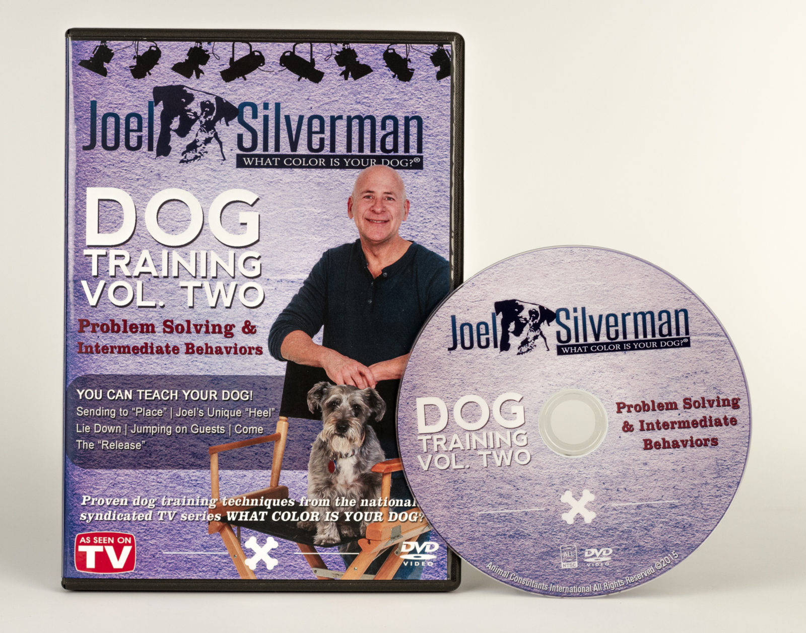 Joel Silvermans Intermediate Behavior And Problem Solving Dvd