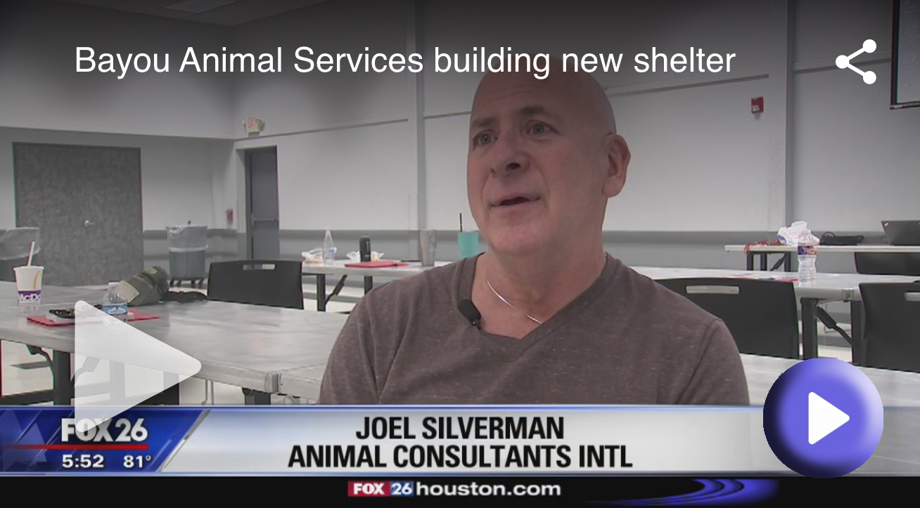 Celebrity Dog Trainer Joel Silverman In Texas