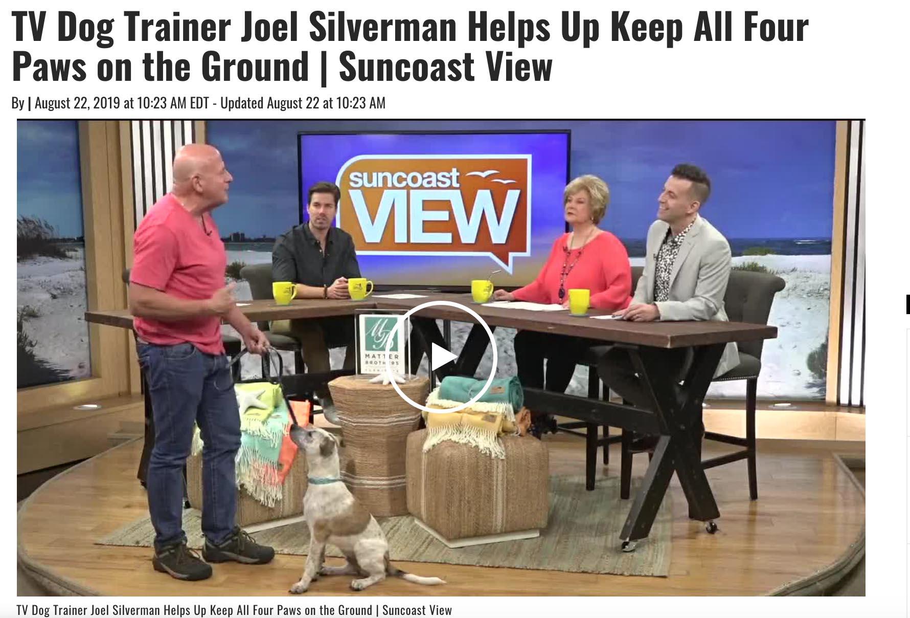 Joel Silverman Sarasota Tv