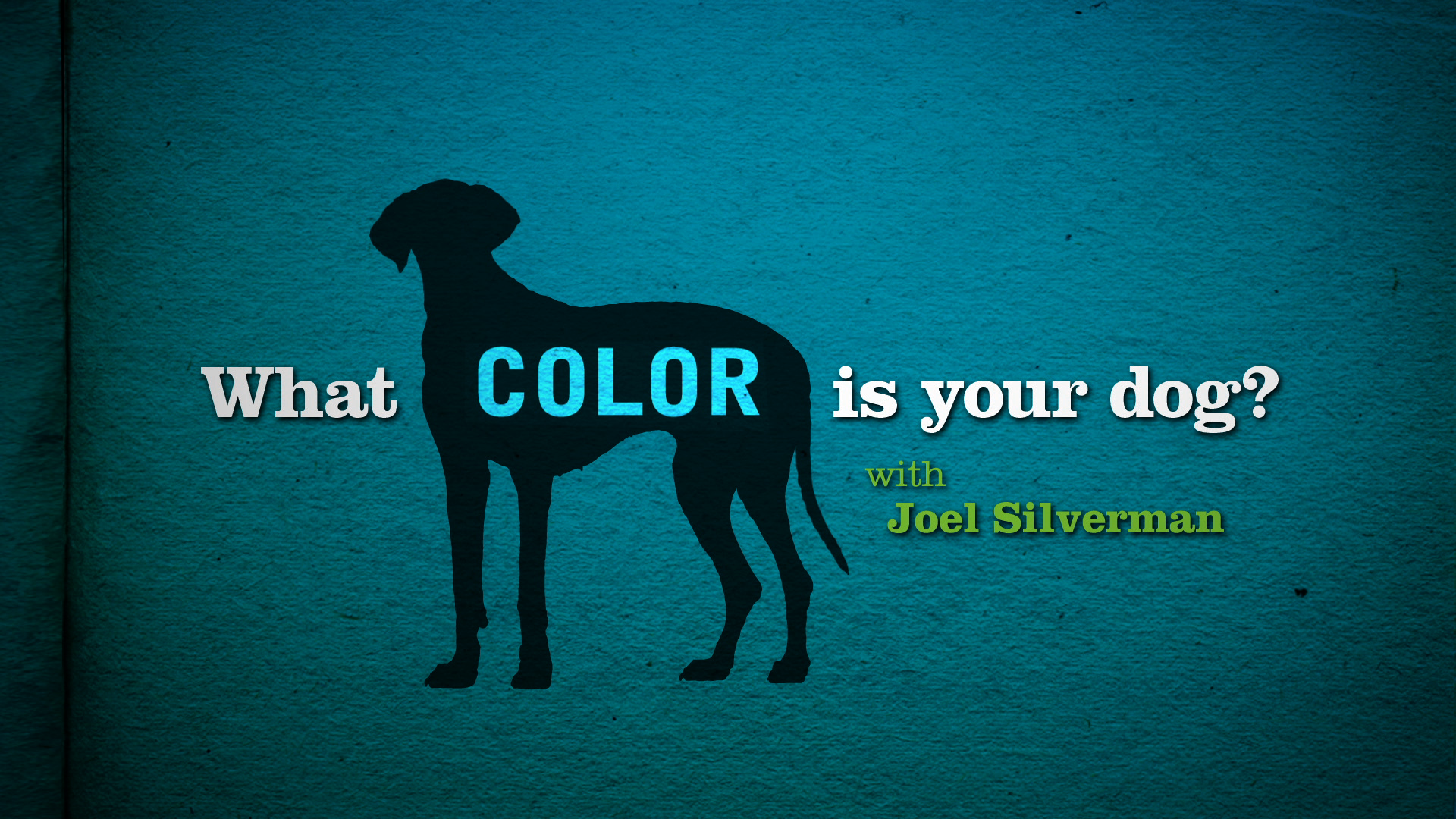 Joel Silvermans What Color Is Your Dog?