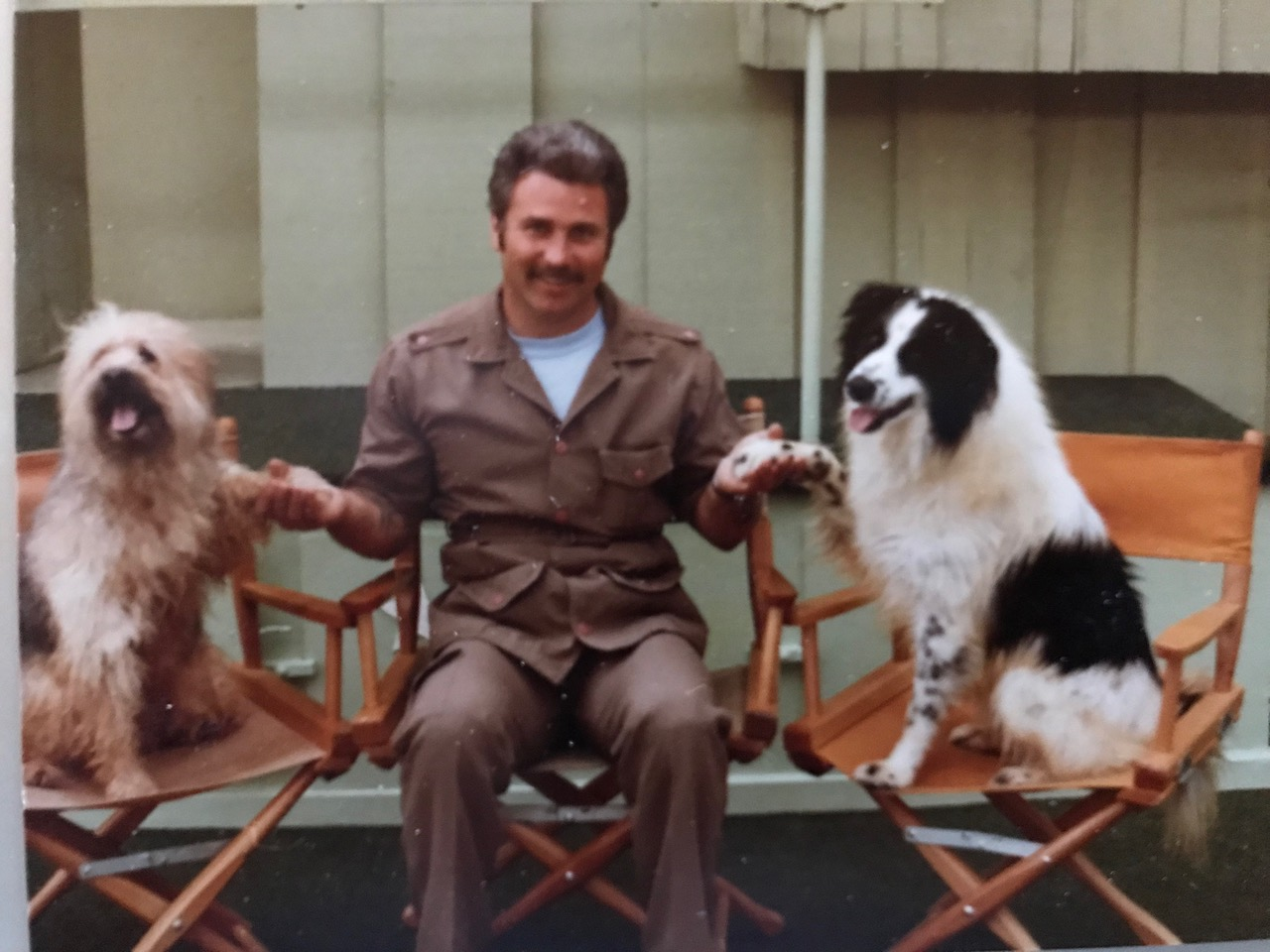 Animals Trained For Movies And Tv Course